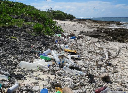 Reducing the impacts of plastic on the BIOT natural environment